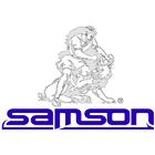 More about samson
